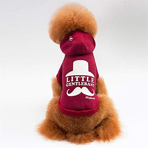 Jdogayncat Pet Clothing, Small Dog Personality Sweater Red Wine Gray Dog  Clothes Wine -