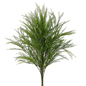21'' Skotch Broom Artificial Plant -Green (case of 12) by SilksAreForever