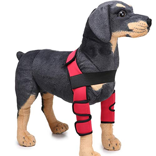 Alfie Pet - Tegan Dog Front Leg Braces with Supporting Sleeve - Color: Red, Size: Small -
