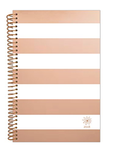 "bloom daily planners 2018 Calendar Year Daily Planner - Passion/Goal Organizer - Monthly Weekly Agenda Datebook Diary - January 2018 - December 2018 - 6"" x 8.25"" - Rose Gold Stripes"