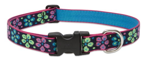 "LupinePet Originals 1"" Flower Power 12-20"" Adjustable Collar for Medium and Larger Dogs"