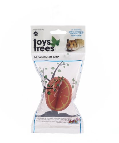 (JW Pet Company Toys from Trees Orange Small Animal Toy, Large)
