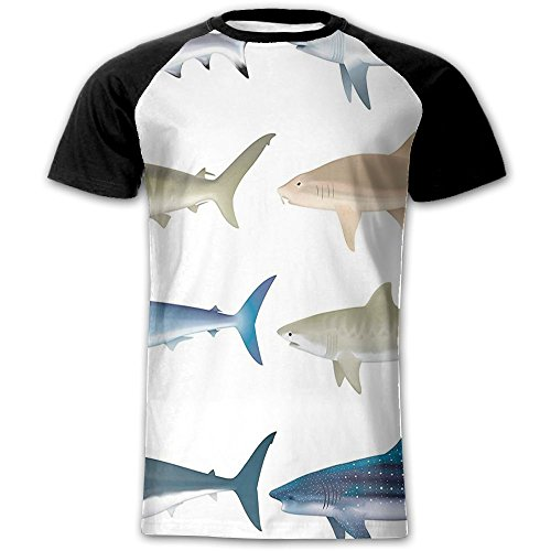 Newfood Ss Types of Angel Cow Hammerhead Sand Sharks Mammals Species Nautical Graphic Men's Short Sleeve Raglan T L