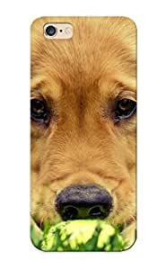 Defender Case With Nice Appearance (golden Retriever Puppy) For Iphone 6 Plus / Gift For New Year's Day