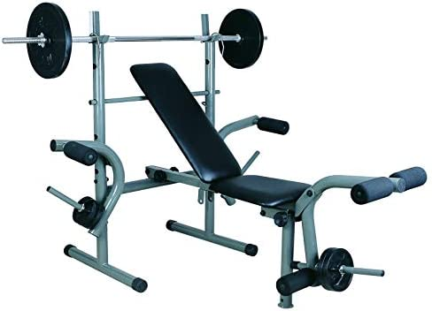 Skyland Multi Function Weight Bench Em 1820 Weights Not