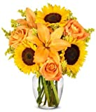 Flowers - The Brightest Colors of Fall Bouquet