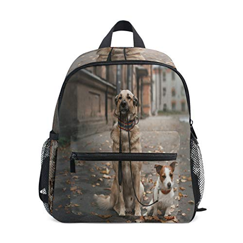 Backpack Mixed Breed Dog And Jack Russell Terrier Walking Autumn Park Mini Lightweight Bag for -