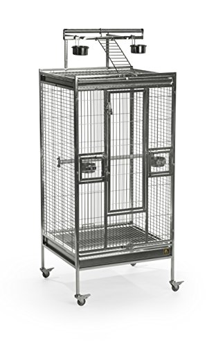 Bird Stainless Steel Cage - Prevue Pet Products Stainless Steel Play top Bird Cage, Stainless Steel