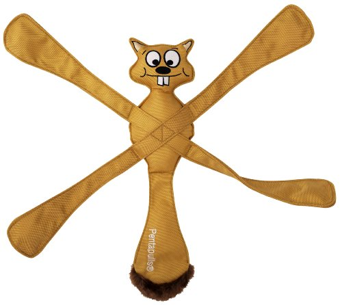 Doggles PentaPulls Dog Toy, Squirrel