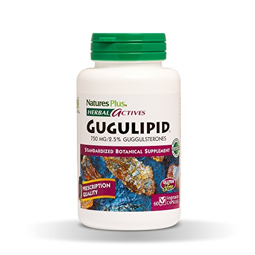 Cheap Natures Plus Herbal Active Gugulipid – 750 mg, 2.5% Guggulsterones – 60 Vegan Tablets, Extended Release – Weight Loss Aid, Cholesterol Support – Vegetarian, Gluten Free – 60 Servings