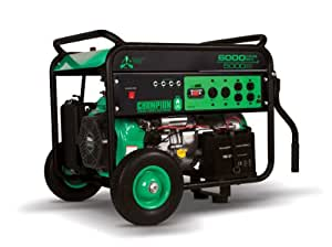 Champion Power Equipment 71330, 5000 Running Watts/6000 Starting Watts, Dual Fuel Powered Portable Generator