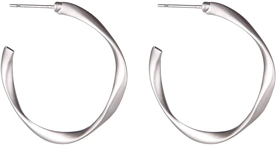 Women/'s Casual Simple 925 Silver Plated Jewelry Rope Round Hoop Earrings Jewelry