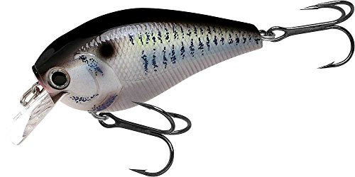 Lucky Craft LC 2.5 Silent (425 Live Threadfin Shad) For Sale