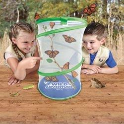 wild-adventure-live-butterfly-habitat