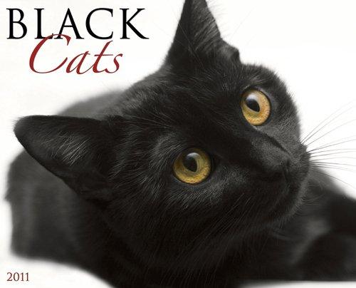 Large 2010 Wall Calendar - Black Cats 2011 Wall Calendar