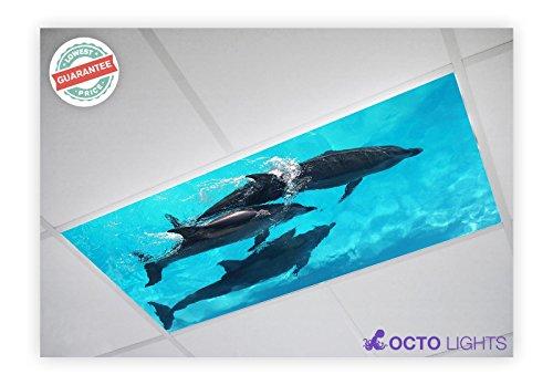Ocean 003 2x4 Flexible Fluorescent Light Cover