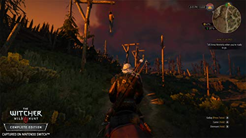 4164J578UCL - Witcher 3: Wild Hunt - Nintendo Switch