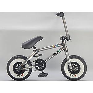 Rocker BMX Mini Bike iROK+ RAW RKR Coaster Model