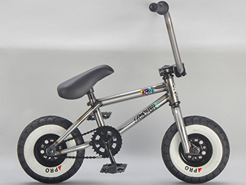 Rocker BMX Mini BMX Bike iROK+ RAW RKR Coaster Model