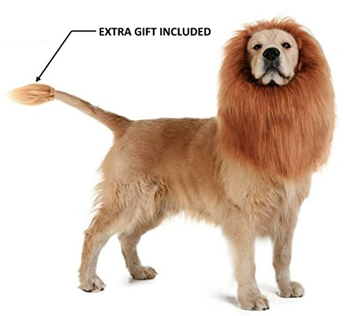 Theeb Lion Mane For Medium to Large Sized Dogs With Ears Plus FREE Lion Tail - SIMBA Lion King Mane For Dogs - Light Brown King of The Jungle Dog Wig For Your Best Friend - Dogs Party Costume