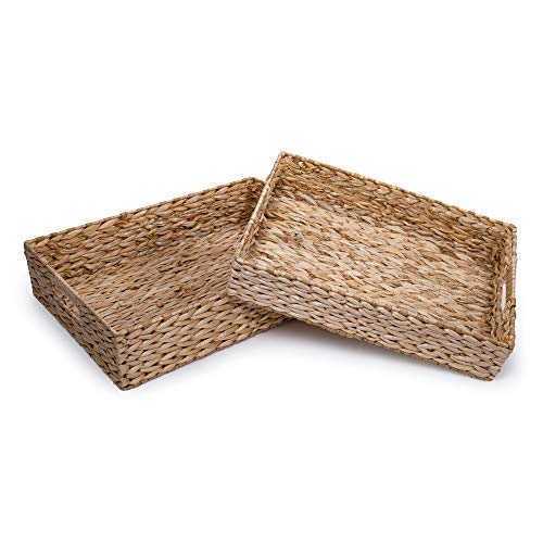 CTG Truu Design Collection, Decorative Water Hyacinth Tray, Set of 2, Beige