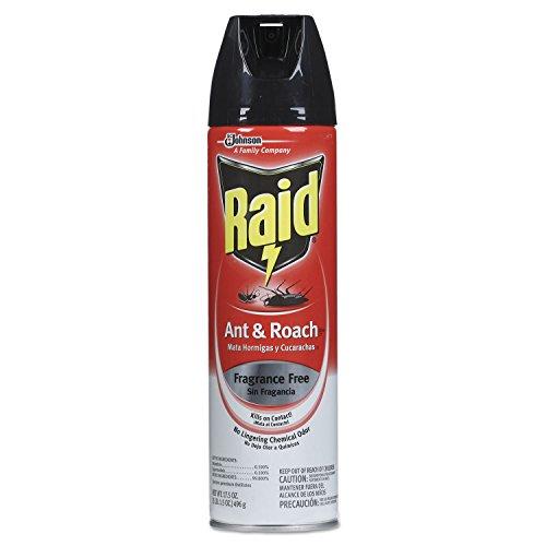 17.5 Ounce Aerosol (Raid CB117173 Fragrance Free Ant & Roach Killer 17.5 oz Aerosol Can 12/Carton)