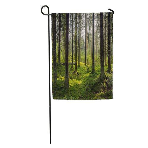 Semtomn Garden Flag Green Forrest Dark Forest Karelia Trees