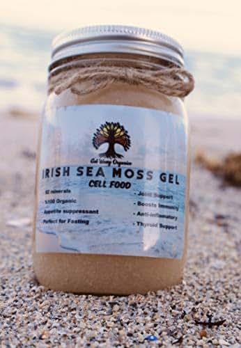 100% Organic Sea Moss Gel - Vegan Super Cell Food Rich in Vitamins A, B, C, D, E, K Calcium and Iodine, Potassium Iodide and Potassium Bromide, Selenium, Zinc and Natural Silica