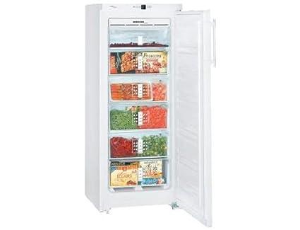Bosch Kühlschrank Baujahr Herausfinden : Liebherr gn2323 20 gefrierschrank: amazon.de: elektro großgeräte