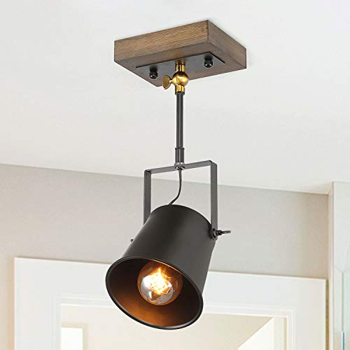 Directional Pendant Track Lighting in US - 8