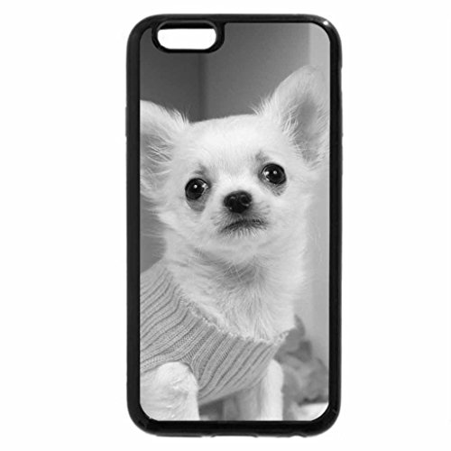 iPhone 6S Plus Case, iPhone 6 Plus Case (Black & White) - CHIHUAHUA IN YELLOW SWEATER