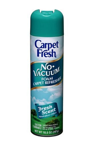 CarpetFreshQuick-Dry Foam,Fresh Scent, 10 OZ ()