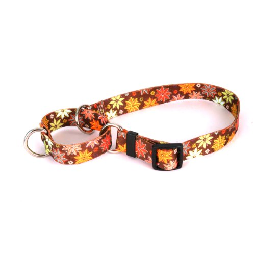 Yellow Dog Design Martingale Pet Collar, X-Small, Autumn Flowers