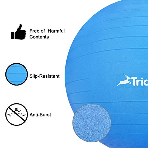 Trideer Exercise Ball (45-85cm) Extra Thick Yoga Ball Chair, Anti-Burst Heavy Duty Stability Ball Supports 2200lbs, Birthing Ball with Quick Pump (Office & Home & Gym) (Dark Blue, 45cm) by Trideer (Image #4)