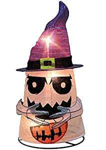 Citi-talent 92-656-001 Halloween Lighted Ghost With Witch Hat, Multicolored