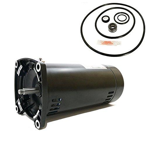 (Sta-Rite Max-E-Glas II 1HP P4EA6E-150L Replacement Motor Kit AO Smith USQ1102 w/GO-KIT-38)