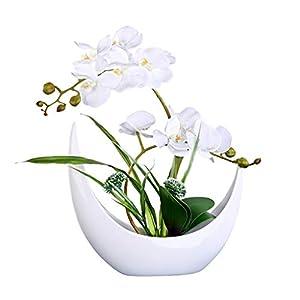 MCGMXG Artificial Orchid Flower Arrangement with White Porcelain Vase, Artificial Bonsai Center Decoration, Plastic Flower (Milky White) Decoration 10
