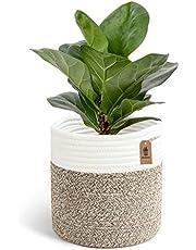 Goodpick Sturdy Jute Cotton Rope Plant Basket - Modern Woven Basket for 25CM Flower Pot Floor Indoor Planters