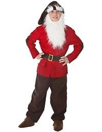 Big Boys' Dwarf Costume - M