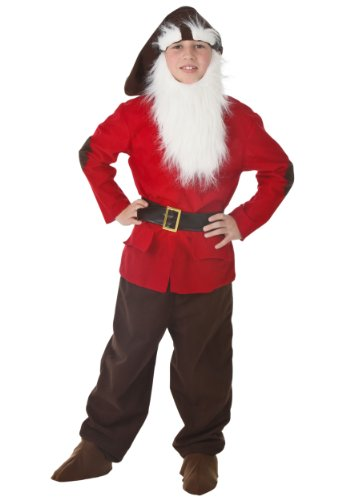 Kids Dwarf Costume Medium Red