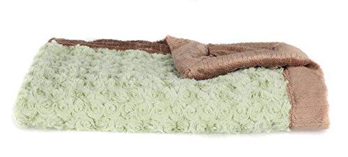 Super Soft Saranoni Luxury Swirl Lush Receiving Blanket 30'' x 40'', Spring Green/Gingersnap by Saranoni