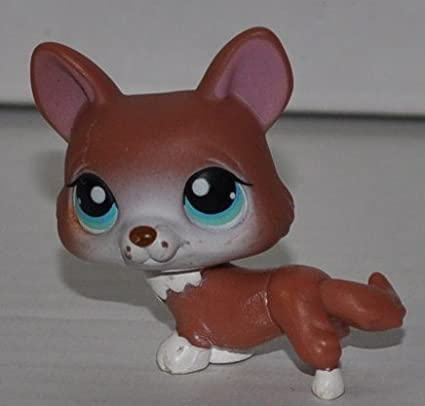 OOP Out of Package /& Print LPS Collectible Replacement Single Figure Red, White Tufts, Blue Eyes Retired Littlest Pet Shop Loose Collector Toy Corgi #317