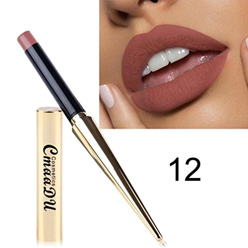 Lipstick,ZTY66 12 Colors Moisturizing Waterproof Lipstick Matte Pumpkin Color Lipstick Eat Earth Rich Vitamin E Moistu (L) (Pumpkin Moisturizing)