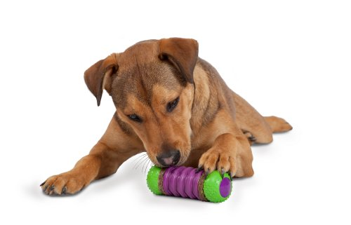 PetSafe Busy Buddy Ultra Stratos Dog Toy, Large -