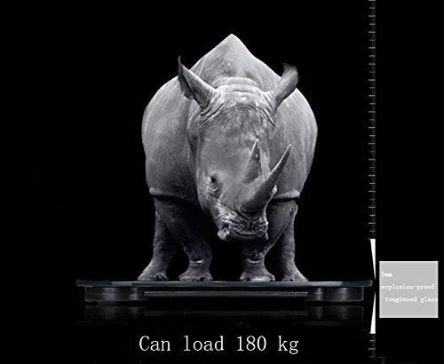 topyart alta precisión digital de baño peso escala con Ronda Edge Vidrio Templado plataforma y gran pantalla LCD con retroiluminación, 400lb/180kg: ...