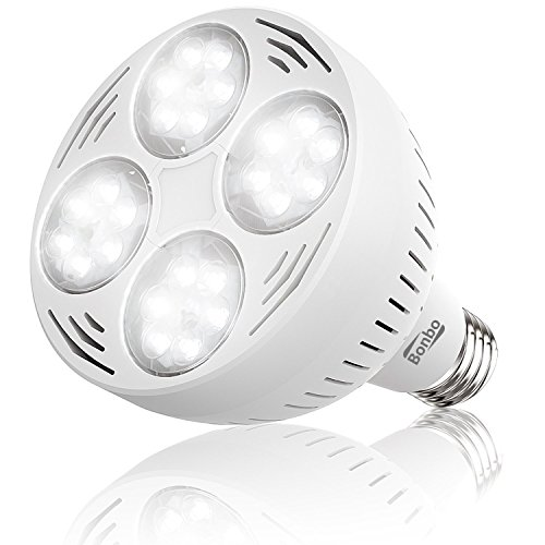 Jandy Led Spa Light