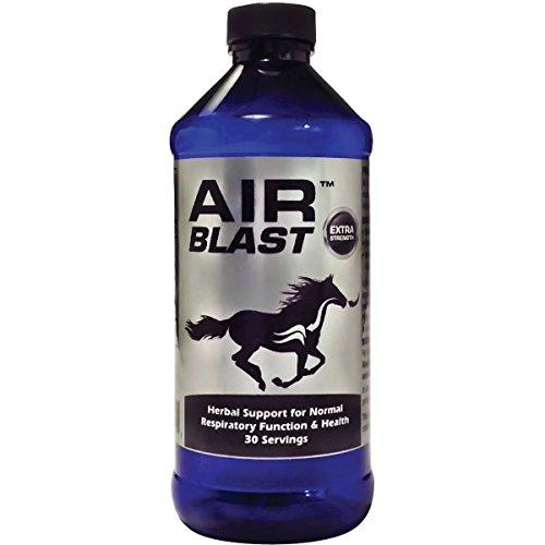 Air Blast - Equiade Air Blast, 16 oz (pint)
