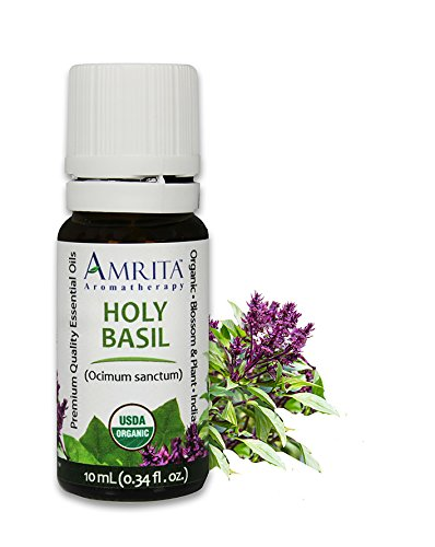 Amrita Aromatherapy Organic Holy Basil Essential Oil, 100% Pure Undiluted Ocimum sanctum, Therapeutic Grade, Premium Quality Aromatherapy oil, Tested & Verified, 10ML