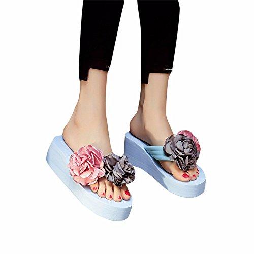 Et Chaussons YUCH Chaussons Avec Blue Pantoufles qEq1twr
