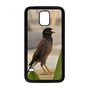 Cute Bird Hight Quality Plastic Case for Samsung Galaxy S5 hjbrhga1544